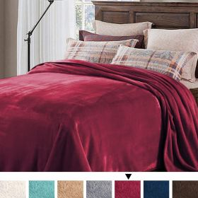 H. versailtex Soft Brush Fabric Warm Lightweight King Size Fleece Blanket